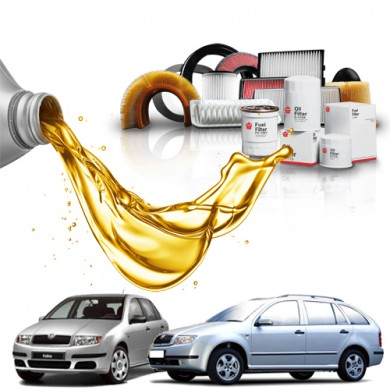 Pachet Revizie SKODA FABIA 1.4 (50kW) Cod motor AME, AQW, ATZ - Filtre + Ulei Motor